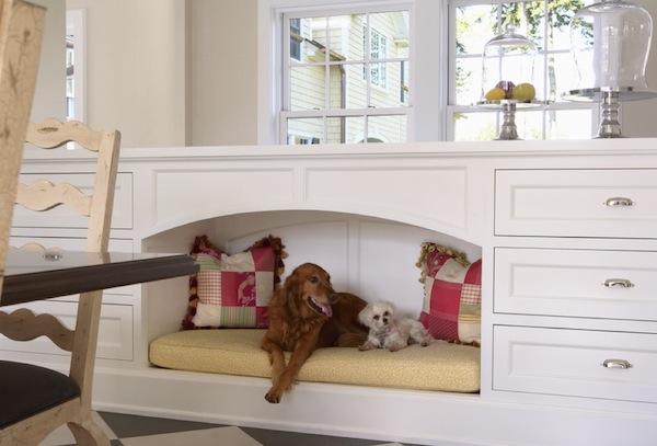 pet living area
