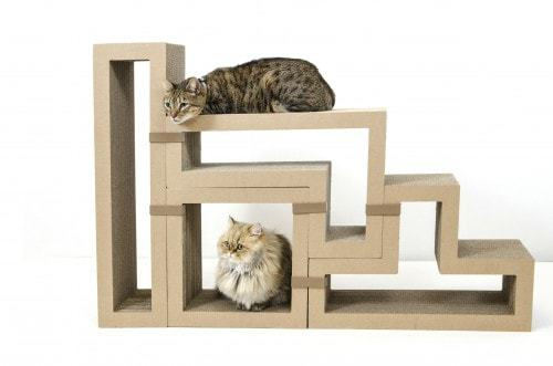 Maine coon cat tree